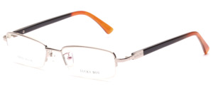 Modern nylon Frame in silver with flex hinge and buffalo horn temples